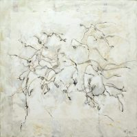 Magnolia Stellata takken (grijs, groen )