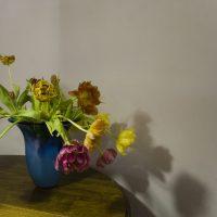 tulpen klein_MG_8373 kopie